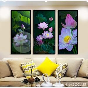 Tranh hoa sen, bộ 3 bức hoa sen hồng