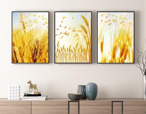 Tranh bộ 3 bức bông lau vàng