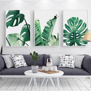 Bộ ba lá cây nhiệt đới