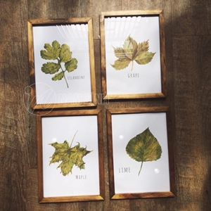 4 Tranh lá cây khung gỗ