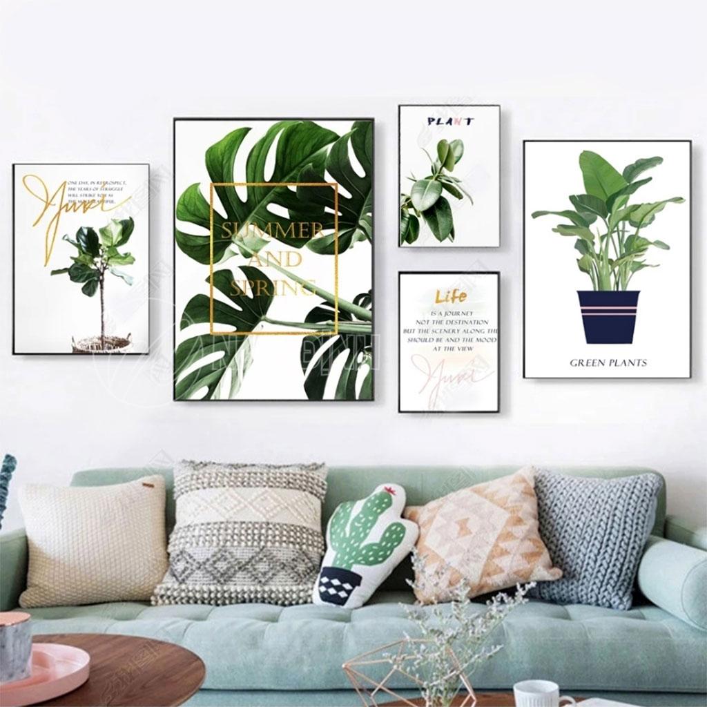 Bộ lá cây nhiệt đới