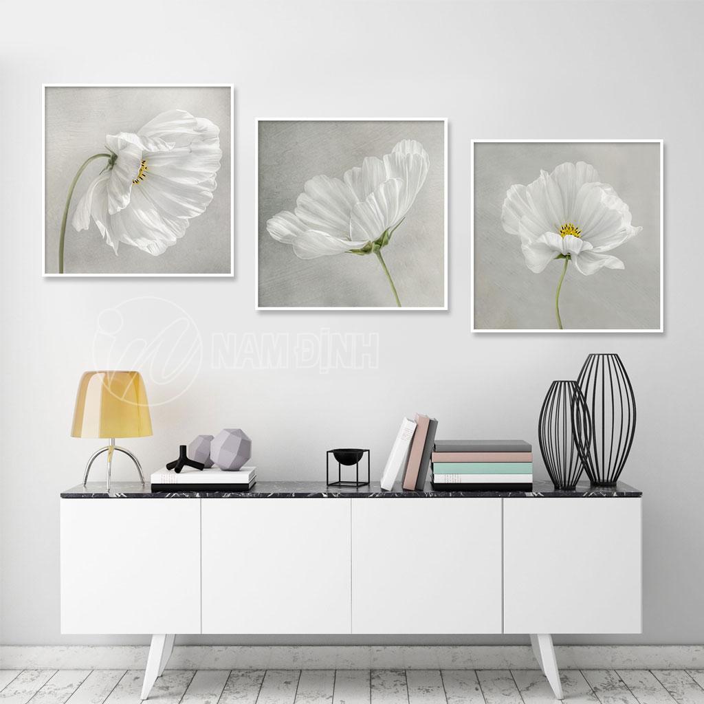 Bông hoa trắng
